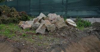 Hecke und Steine