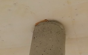 Betonpfeiler Terrasse brösel 2